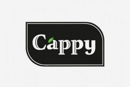 Cappy 0.33L